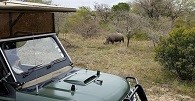 /_uploads/images/branch_tours/southafricanature_day5-krugerpark-jeep.jpg