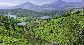 11-Day on Foot in Kerala Walking Tour of Southern India with Explore! TREKKING